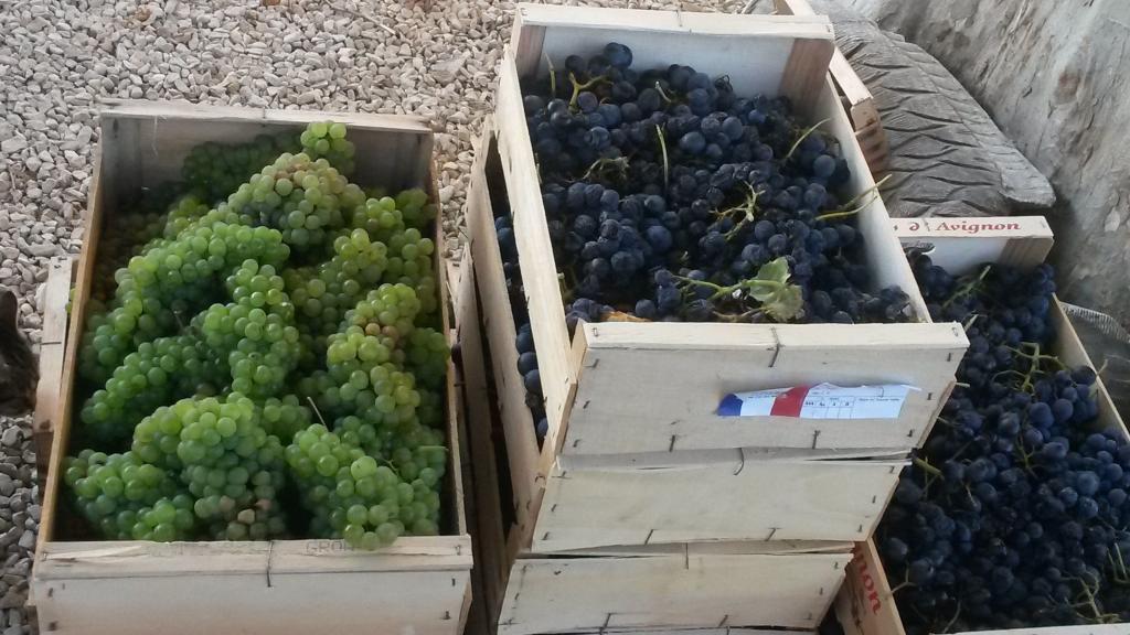 Shopping Mas de la Croix de Fer #Provence