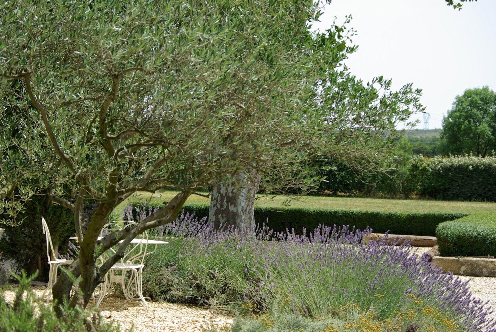 Mas de la Croix de Fer #Mallemort #Provence #Garden #Guesthouses