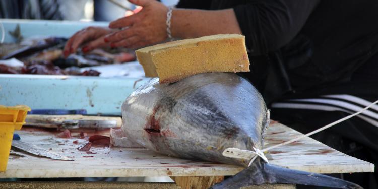 Marseille Fish Market #Marseille #Provence @PerfProvence