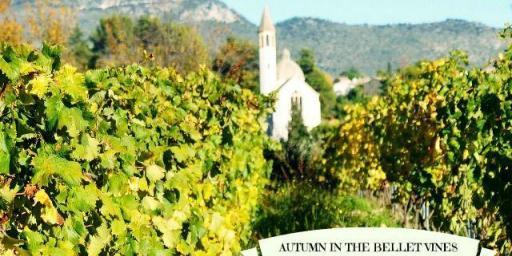 Bellet-Vines #Provence #Wines @RivieraGrape