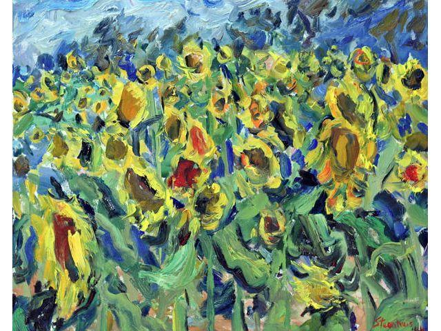 Field of Sunflowers in the Wind 2014 Jill Steenhuis #Provence