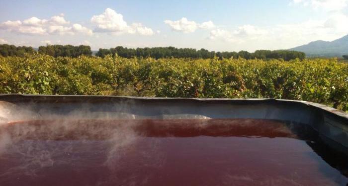 Vin Cuit #Provence #Wines @Susan_PWZ