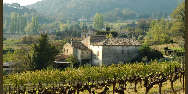 Vineyards of Provence #Provence #Wines @vaisonsharon