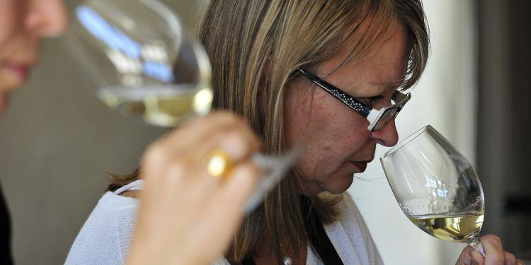 Domaine de la Verriere Provence Wines