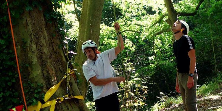 Tree Climbing #France @bfblogger2013