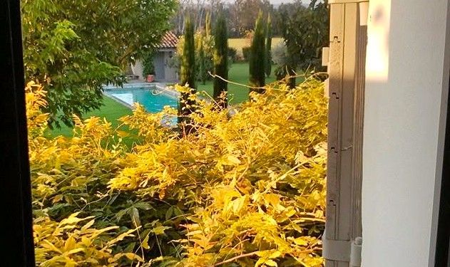 Villa View #Provence @francewithdawn