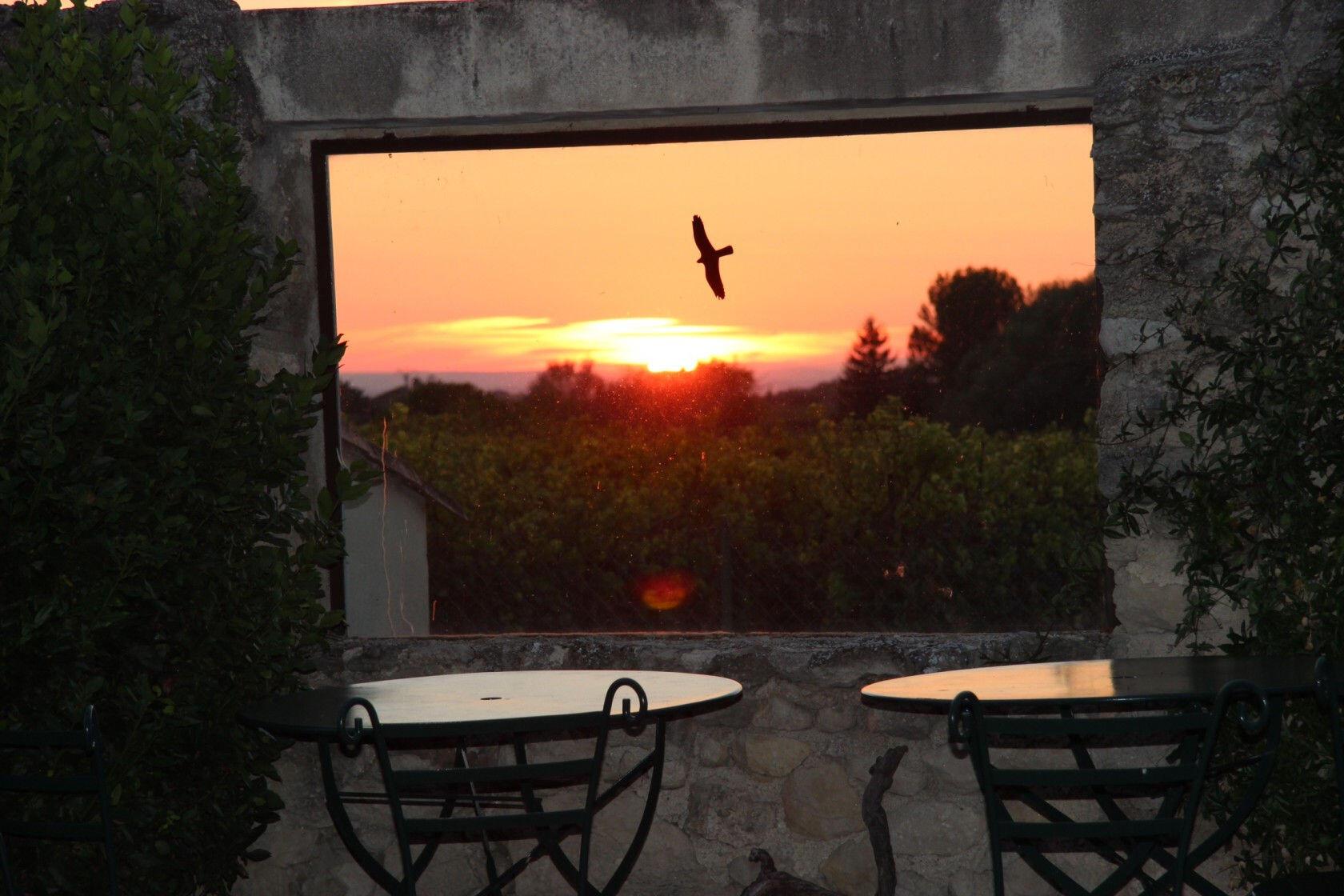 Clos Saint Paul #Mazan #Rentals #Provence @ClosSaintPaul