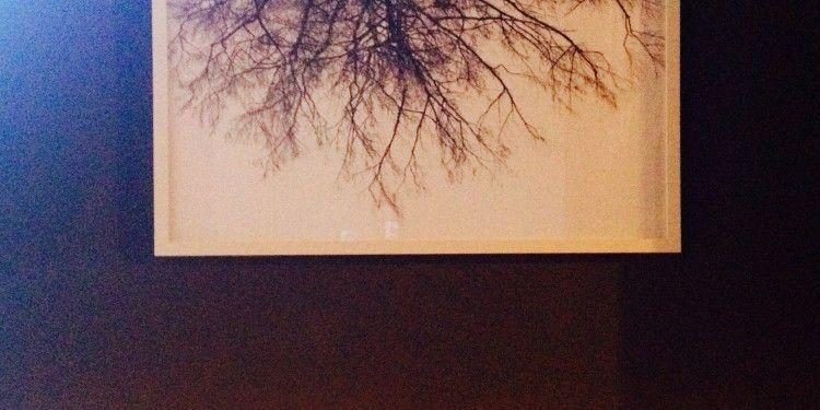 Yoga Studio #Provence #Eygalieres #YogaClasses