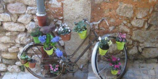 Provence bike Fête des Violettes Tourrettes sur Loup