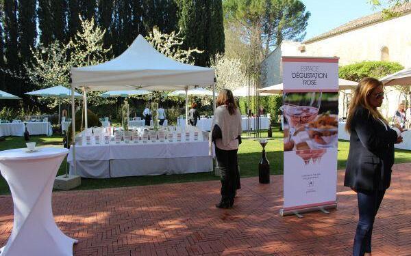 rosés of Coteaux Varois-en-Provence #WinesofProvence via @LizGabayMW