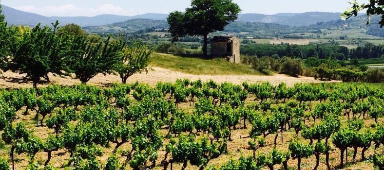 Hiking the Perreal #Hiking #Provence @ProvenceTayls