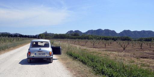 Alpilles Wine Tasting AOC Les Baux de Provence