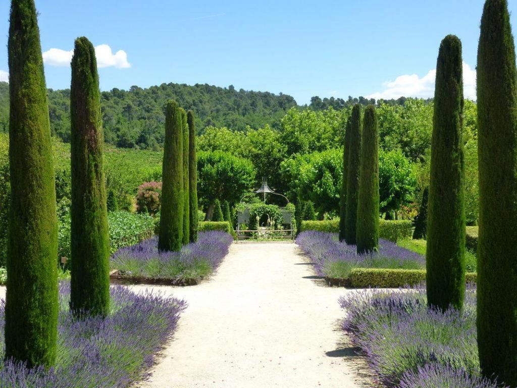 Discover Provence Wine @AboutProvence