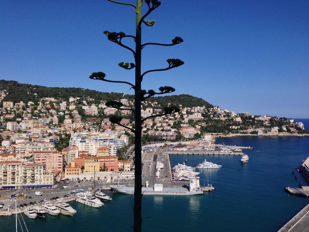 Nice Old Port #Nice06 #CotedAzur @PerfProvence