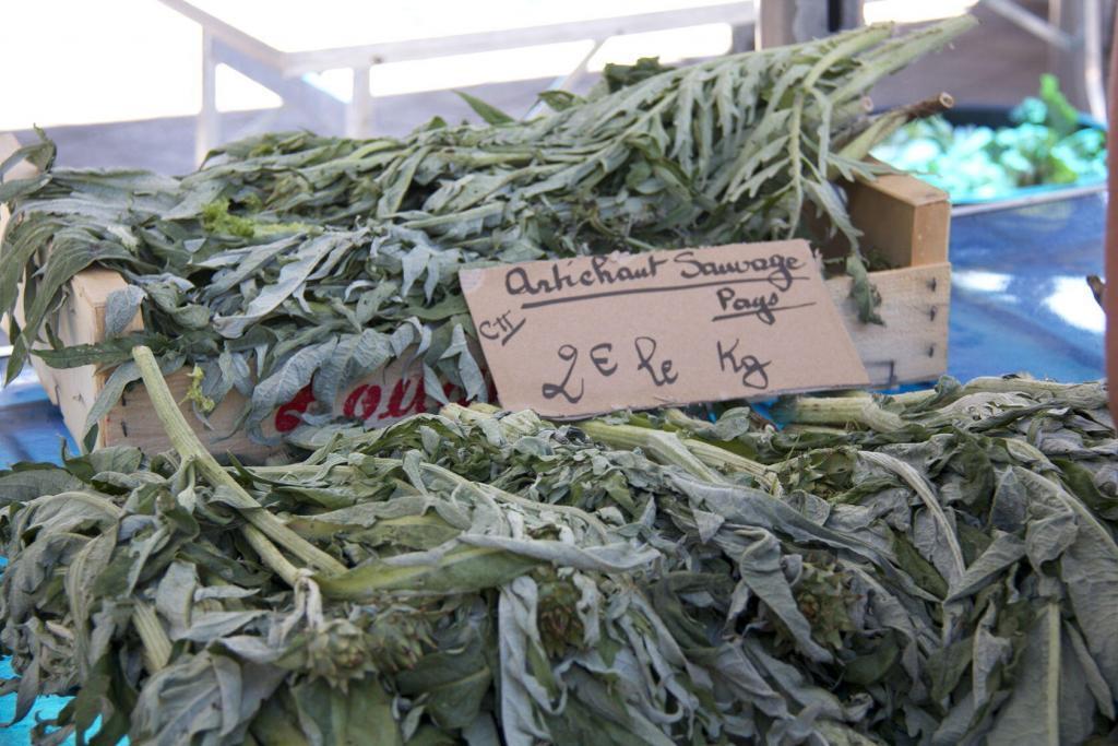Market wild artichoke #Nice #Market #CotedAzur