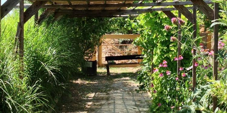 Welcome shade Garden Couleur Garance #Lauris #Provence