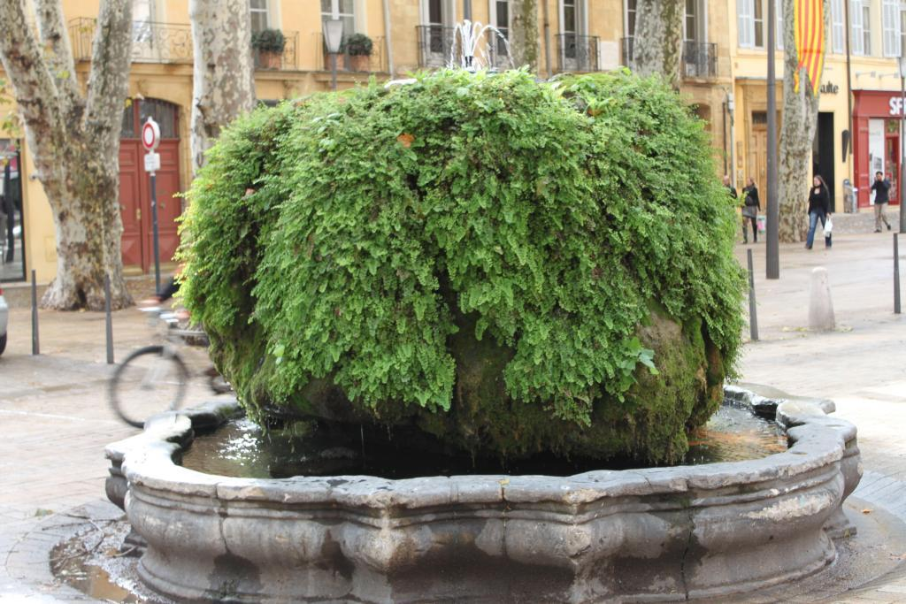 Mossy Fountain Cours Mirabeau Aix-en-Provence