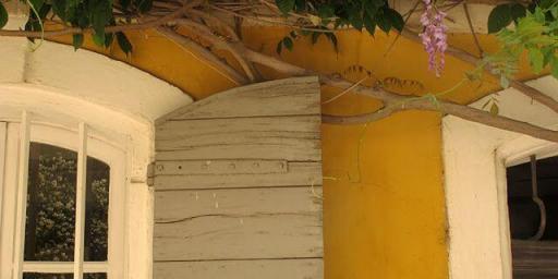 Visit Arles Provence @LostinArles @HeatherRobinson