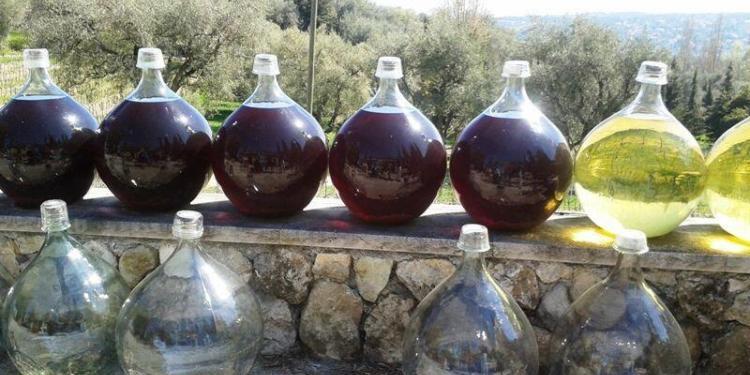 Visiting Vignoble Rasse IGP Alpes-Maritimes @RivieraGrape #WinesofProvence