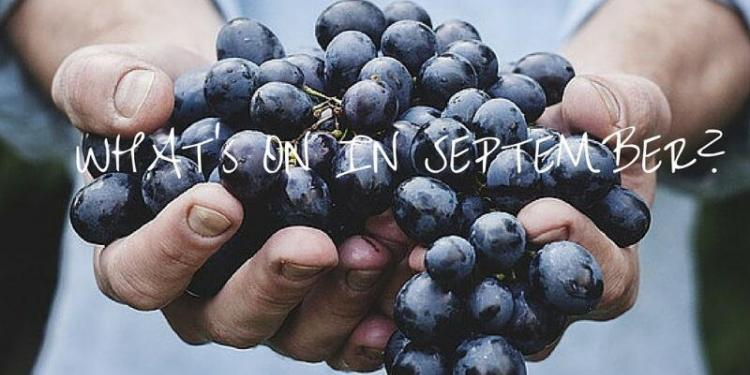 September Wine Events #FrenchRiviera @RivieraGrape
