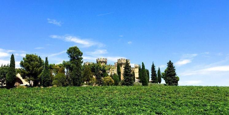 Chateauneuf du Pape #RhoneWines @bfblogger2015
