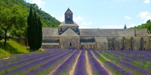 #Lavender l'Abbaye Notre-Dame de Senanque #Provence @ShutrsSunflowrs