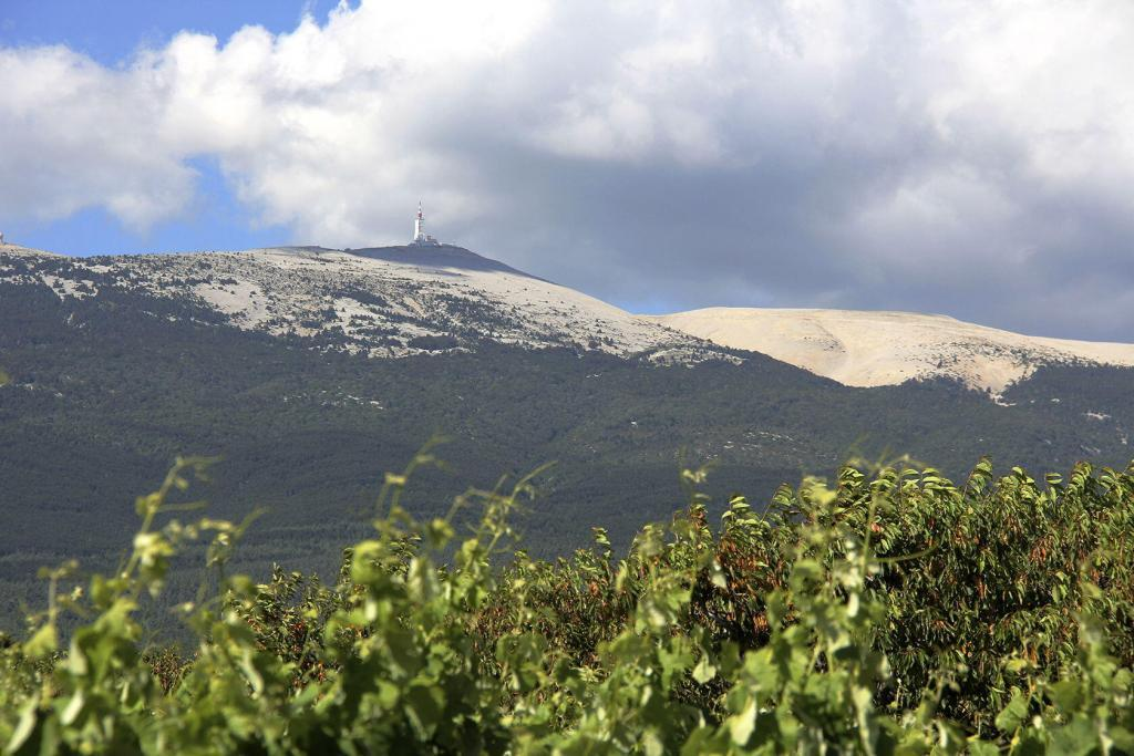 Mont Ventoux View @PerfProvence