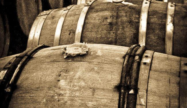 Barrel Antique #WineodFrance @Susan_PWZ