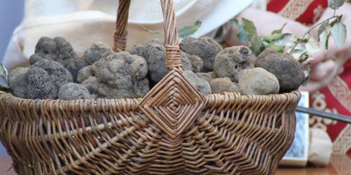 Black Truffles #Provence #Truffles