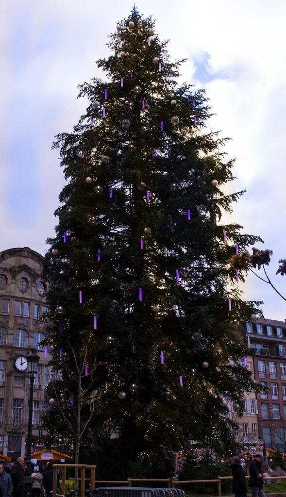 Strasbourg Christmas Tree @PJAdams10