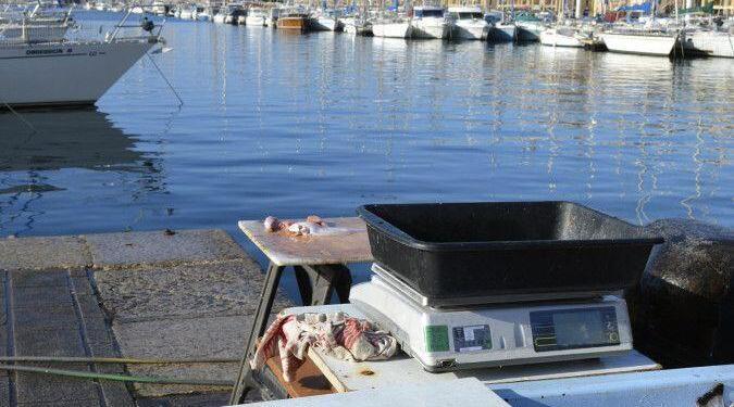 Marseille Vieux Port #Marseille @CuriousProvence