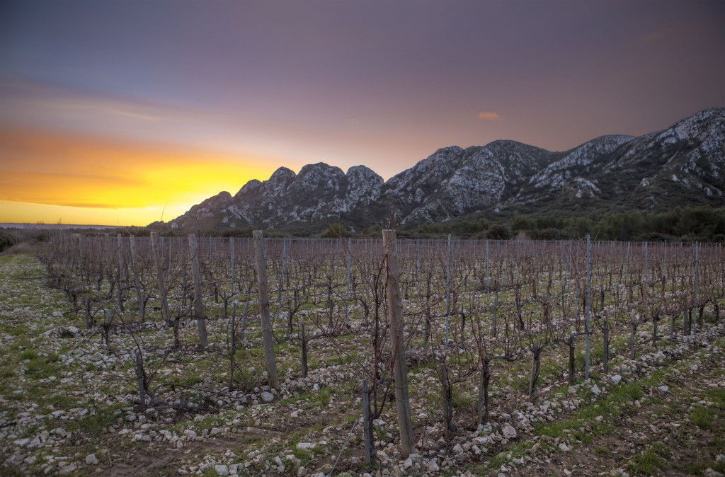 Chateau Romanin #WinesofProvence Les Alpilles #AOPLesBauxdeProvence