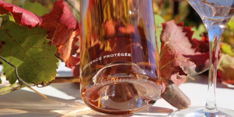 Mirabeau Pure Punt @MirabeauWine #WinesofProvence