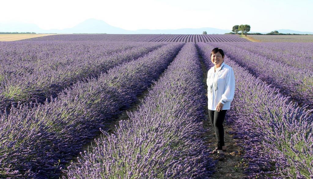 Gorges du Verdon lavender tour #MoustiersStMarie @GetawayProvence