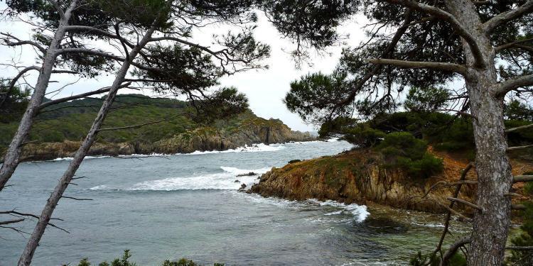 Poquerolles #Poquerolles Cote d'Azur @PerfProvence