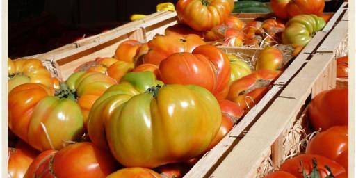 Tomatoes Provence Market Produce @TableEnProvence