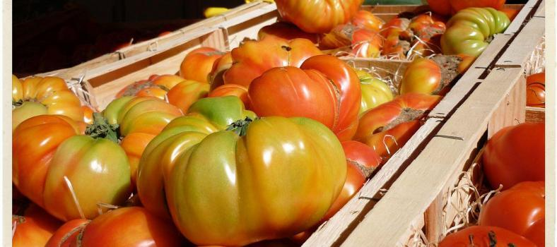 Tomatoes Provence Market Produce @TableEnProvence
