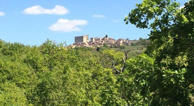 Living the Provence Dream @VaucluseDreamer