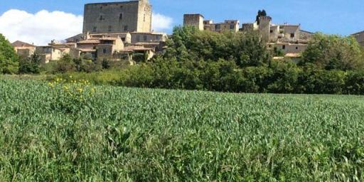 towers of Caseneuve @Vauclusdreamer