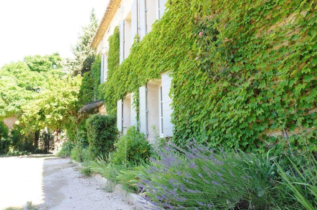 Ferme du Val lavender and vine on house