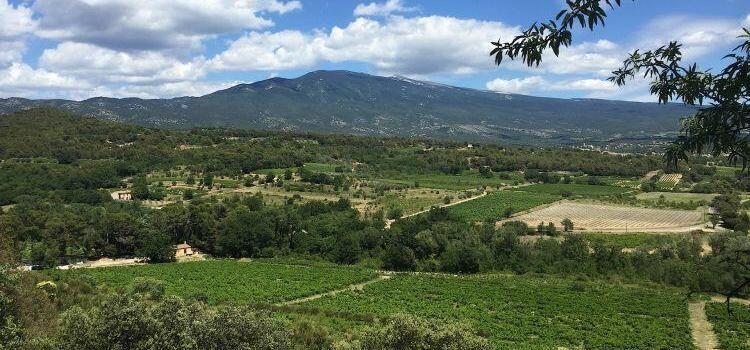 Mount Ventoux viewed from Caromb @bfblogger2015