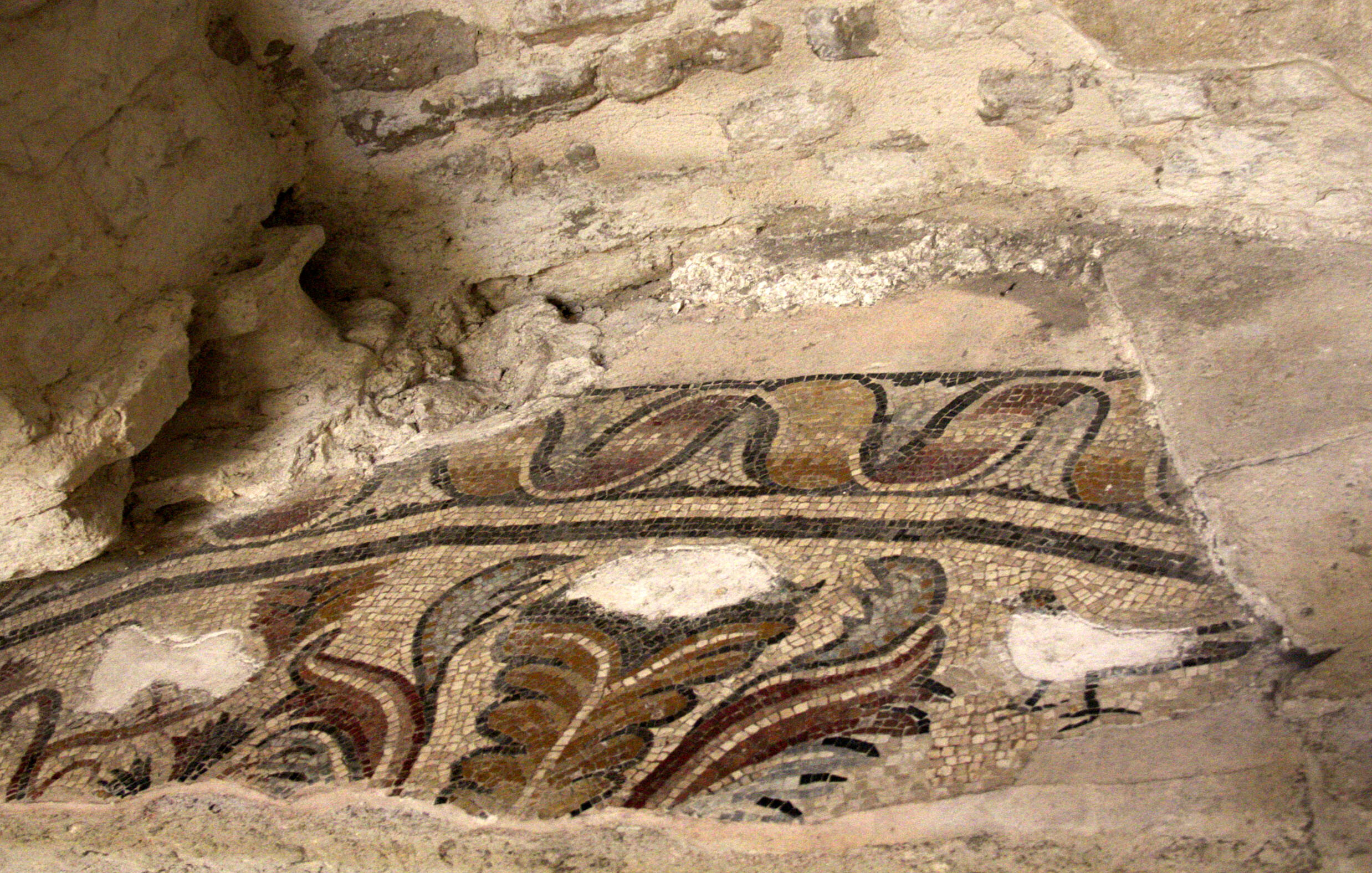 Mosaic remains in the cathedral #AixenProvence @PerfProvence
