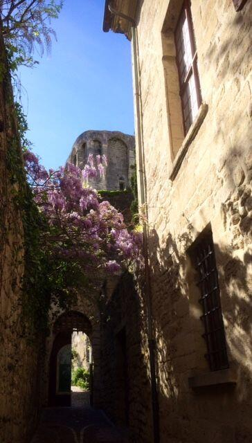 Spring in Provence @alabreche_annie