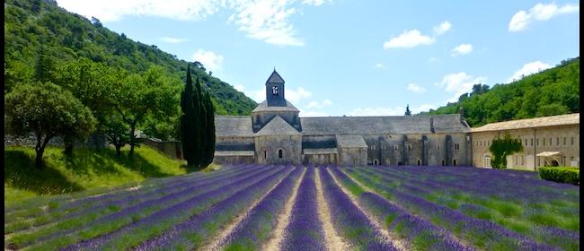Luberon Abbaye de Senanque @ShutrsSunflowrs