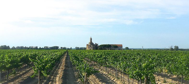 Sable de Camargue winery Wines Provence @bfblogger2015