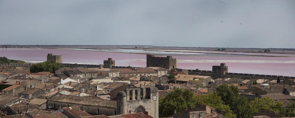 Aigues Mortes Bouches du Rhone Camargue