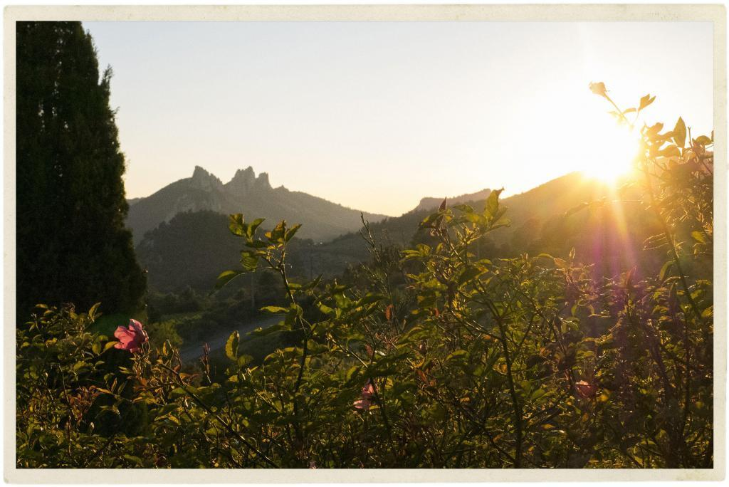Dentelles sunset @TableenProvence