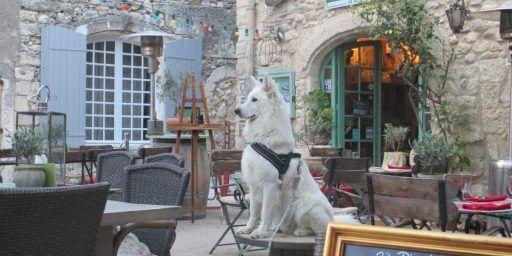 le petit cafe retaurant in Oppede-le-Vieux @cobblestoneandvineyards