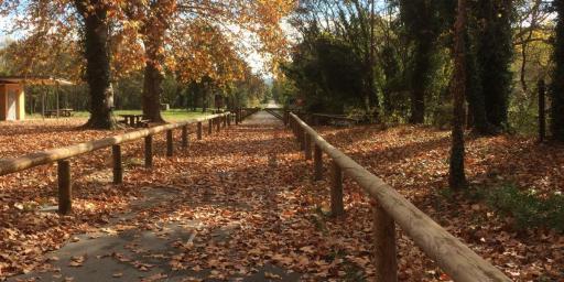 Provence in Autumn #ExploreProvence @VauclusDreamer