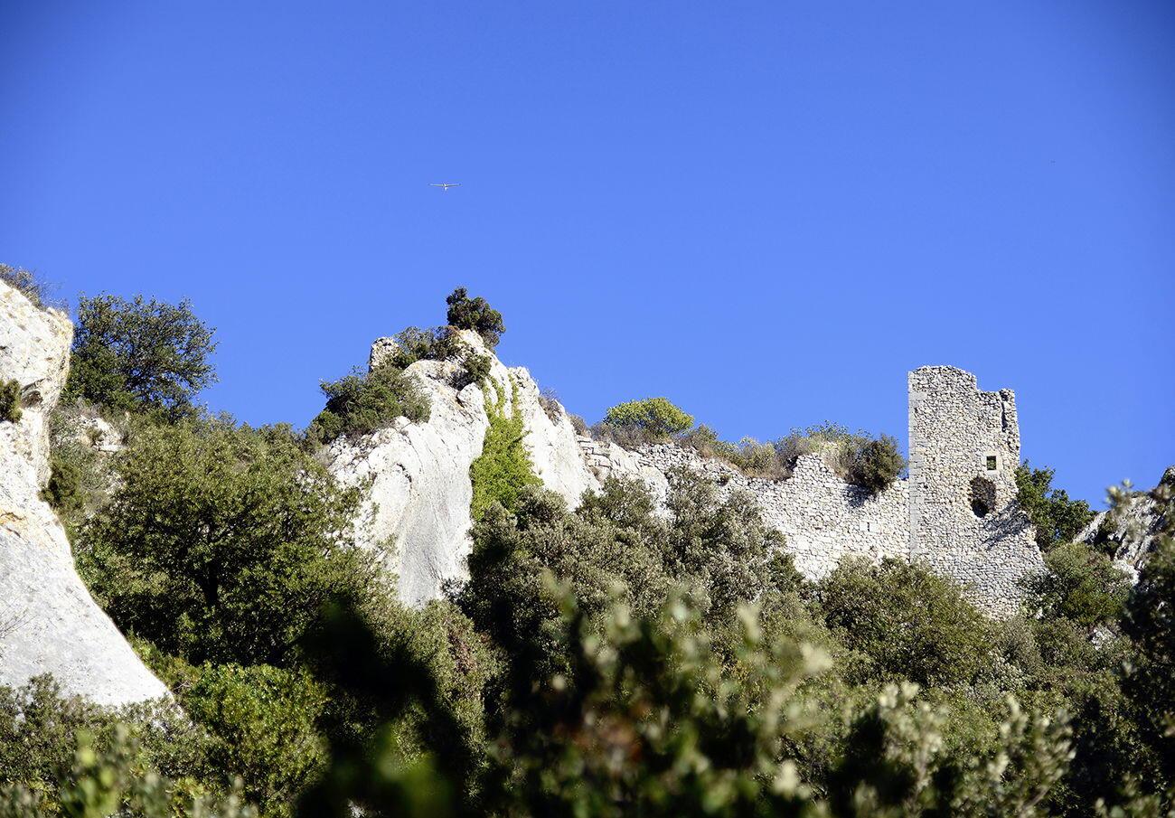 Ruins Château Romanin Alpilles Provence